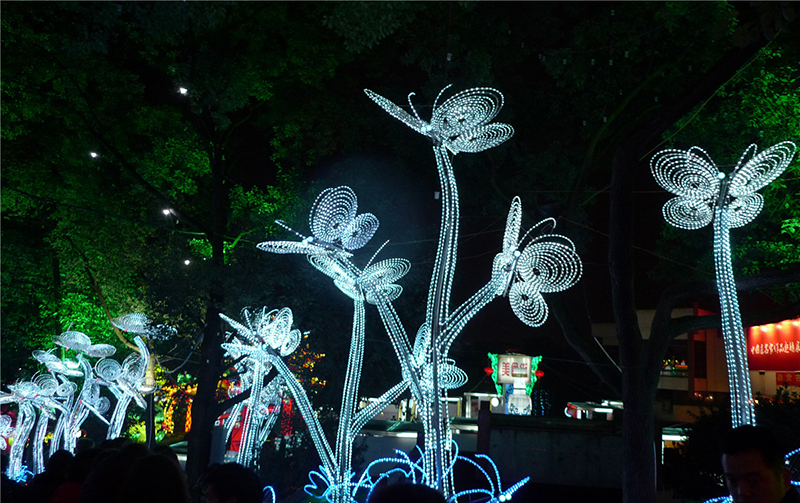 亮化工程:銀色蜻蜓
